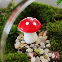 苔藓微景观小摆件 树脂小蘑菇 红色迷你蘑菇 多肉园艺DIY工艺品