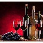法国葡萄酒清关代理