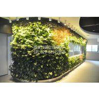 供应西安竹溪植物墙 造型多变植物墙 室内室外 酒吧咖啡厅植物墙