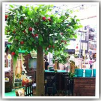 园林景观 室内装饰仿真苹果树 酒店居家绿色植物造景 餐厅装饰仿真果树