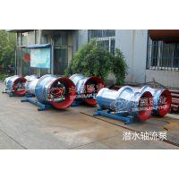 天津热门潜水轴流泵生产厂家