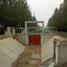 双向止水4米*2.5米双吊点铸铁闸门成套QL-120-SD手电两用螺杆式启闭机