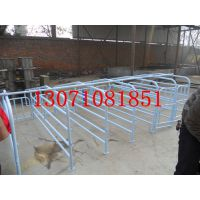 养殖业机械 育肥猪定位栏 可尺寸定制的育肥床 厂家专业生产猪妊娠栏 限制栏