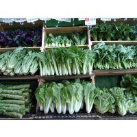 水果蔬菜生鲜连锁超市成都招商加盟