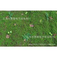 仿真植物 草坪 热带雨林苔藓 人工假植物青苔 植物墙配材厂家直销