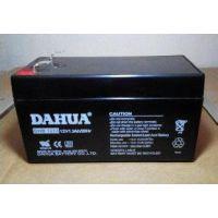 2015新款 大华蓄电池DHB1275