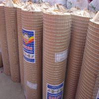 厂家供应热镀锌电焊网 养殖铁丝网 60丝钢丝网 低碳钢丝焊接网