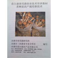 茶树菇栽培种植技术资料食用菌培训菇尔康农村致富项目