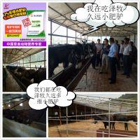 肉驴增重剂 驴催肥添加剂 驴长得肥专用饲料