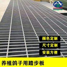 化工厂玻璃钢格栅栈道型号 长条型孔眼格栅尺寸 100×25 河北华强