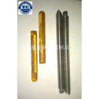 不锈钢化学锚栓M8X110 201 304 316 2520 321Ti
