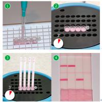 牛奶抗生素检测试剂盒CB-Eclipse 50–96 tests BOX SPT/Eclipse