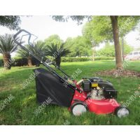 自走式草坪机 公园绿化带专用草坪机 简单易操作打草机