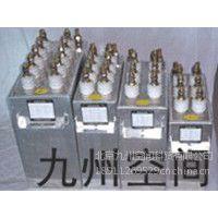 供应电热电容器生产    电热电容器厂家    电容器热卖