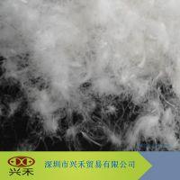供应羽绒厂直销纯白80白鸭绒 批发供应 国标 服装填充物 羽绒羽毛