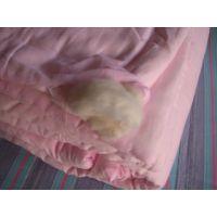 天之星家纺 纯棉 销售手工棉被  定做手工棉被带粗布被罩
