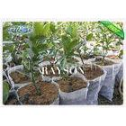 Seedling Bag To Cultivate Seedlings Non Woven Agriculture Fabric 20GSM Weight
