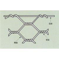 安徽省康财恩金属丝网厂家直接供应优质镀锌拧花网