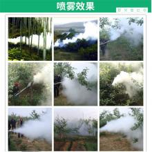 果园杀虫打药弥雾机 背负式园林喷药弥雾机