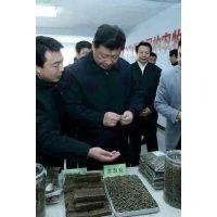 湖南木屑颗粒机厂家 出口环保生物质颗粒机 国内规模环保颗粒机生产基地