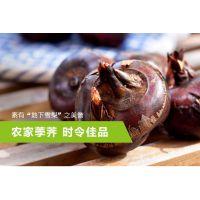 出售【马蹄、荸荠、地栗】清甜无渣,爽脆可口,产自中国马蹄之乡--荔浦县青山镇
