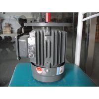 销售 上海德东电机(YE2-315M-6 90KW)6极 三相异步电机