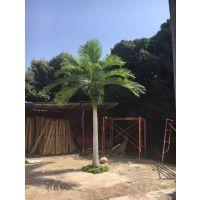 新款仿真椰子树 精品室内椰子树 热带植物景观树 厂家直销