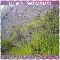 四川威盛专业生产山体落石被动防护网