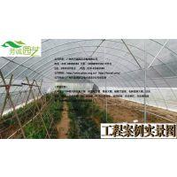 供应中山蔬菜大棚FC-012、蔬菜大棚厂家、芳诚温室--18988967562