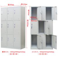福州闽科更衣柜生产厂家档案柜2二门更衣柜可定制衣柜