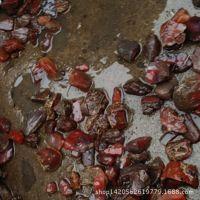 南红玛瑙原石非洲南红原石批发莫桑比克南红玛瑙 支持挑货