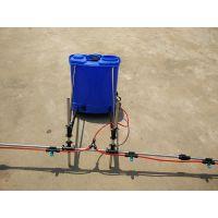 大成便携式植保喷雾器 小型背负式农用打药机