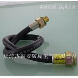 防爆软管,防爆挠性管BNG-DN20*1000 振安