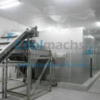 vegetable and fruit quick freezing machine/IQF tunnel freezer