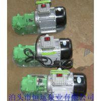 供应WCB-75微型手提式齿轮油泵,不锈钢齿轮泵,高粘度泵