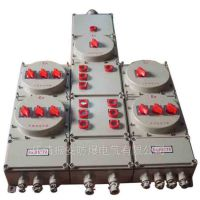 多回路防爆动力配电箱,BXM(D)系列质量好,价格优,振安品牌