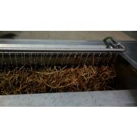 桔梗去皮清洗机的价格 桔梗清洗机的厂家
