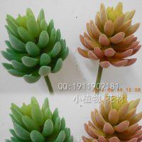 批发人造植物 仿真手感宝石莲 大号 红、绿色 插花花艺 热带植物