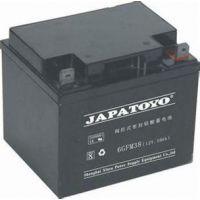 东洋蓄电池12V12AH