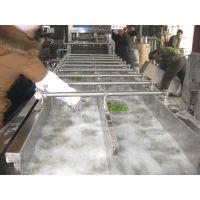 宜福达HQ-6A型竹笋清洗机/洗竹笋机