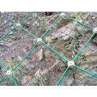 pvc包塑边坡防护网钢丝绳网主动防护网厂家直销