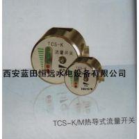 稀油站冷却水示流计TCS-K热导式流量开关