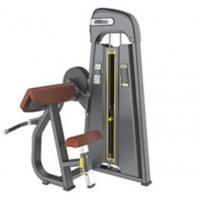 供应奥圣嘉二头肌训练器ASJ-S806专业力量组合器械健身房专用