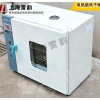 恒温鼓风干燥箱故障维修,畅销电热恒温鼓风干燥箱型号