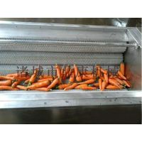 水果清洗风干机|清洗风干机|诸城鼎康机械
