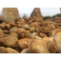m供应英德大型景观石 英德黄蜡石 招牌石 假山石 平面石 黄腊石