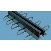 成都济通路桥供应优质 DGL型钢伸缩缝,量大从优
