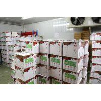 大型食品气调冷库安装设计保鲜有哪些好处
