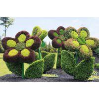 五色草造型花朵 植物雕塑 公园景点制作