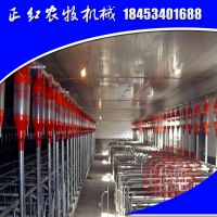 养猪料线养猪自动料线养猪设备自动饲喂系统